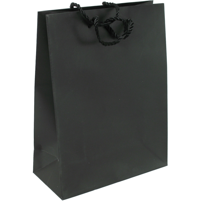 Bag, Art paper, Deluxe bag with cord, 22xSide fold 10x29cm, carrier bag, black 1