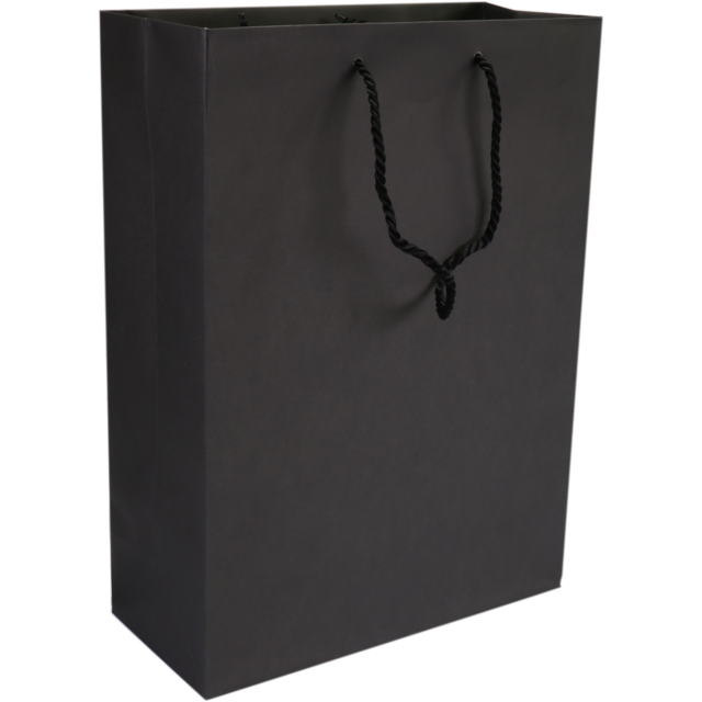 Bag, art paper, deluxe bag with cord, 27xSide fold 12x37cm, carrier bag, black 1