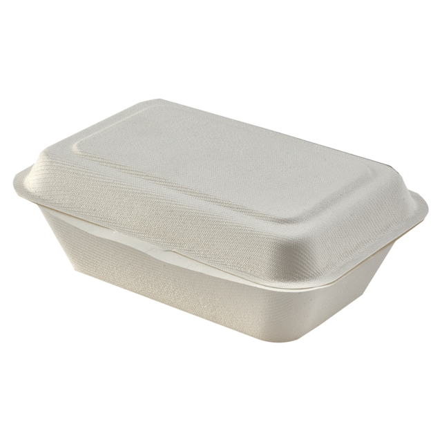 Container, Bagasse, 7x4x white 1